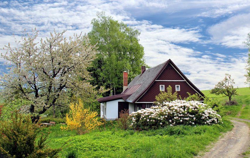 Jak sprawić, aby dom i ogród zyskały na wiosnę nowe życie?